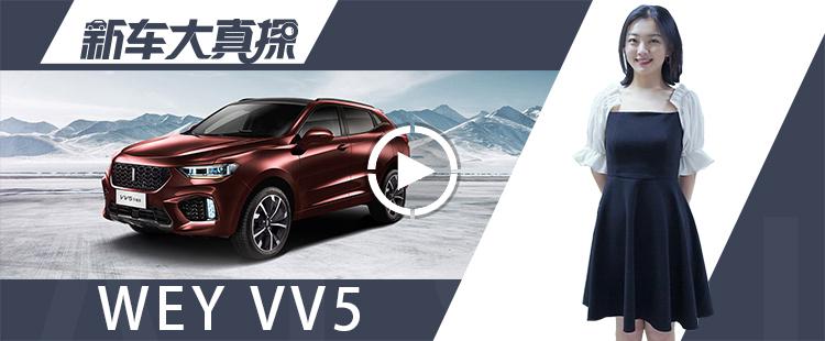 新車大真探:你喜歡VV5的特立獨行?還是VV6的好好先生?