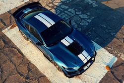 最大马力760匹眼镜蛇出没 福特公布Shelby GT500详细参数