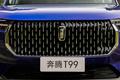 102059-奔腾T99