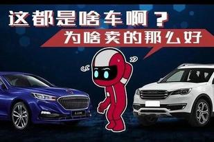 有的车你可能不认识,一个月却卖一万辆?
