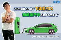 电动车十问第6期:2025年目标遭下调,新能源车