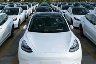 """为何国内电动车市场孕育不出一辆""""卡罗拉"""""""